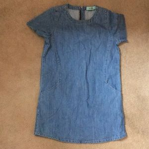 Denim Karlie Dress